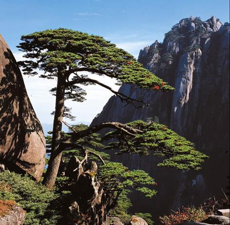 Гора Хуаншань, Аньхой